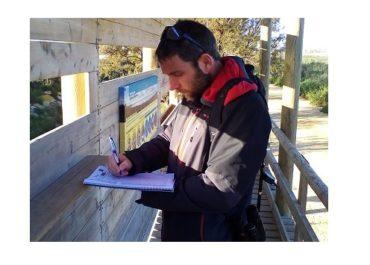 Censos de aves acuáticas en el LIFE Salinas