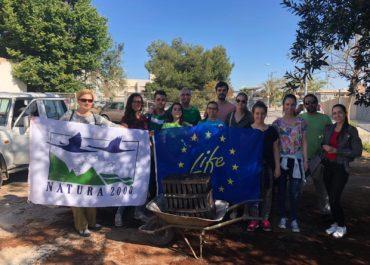 Second volunteer activity: Production of dune plants