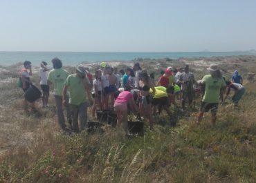 "Students of the charter school ""Nuestra Señora de los Dolores"", from Hellín, participate in the invasive species removal at La Llana Beach"