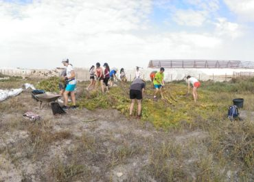 The volunteering activities begin in Las Salinas de San Pedro del Pinatar