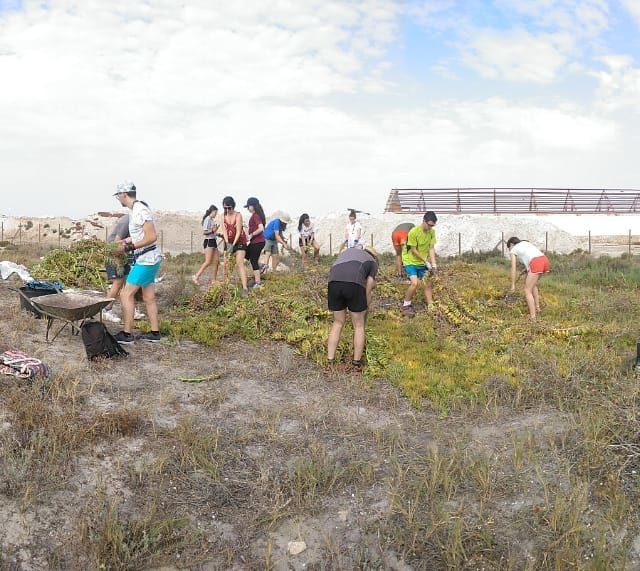 The volunteering activities begin in Las Salinas de San Pedro del Pinatar