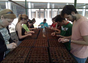 One year of environmental volunteering