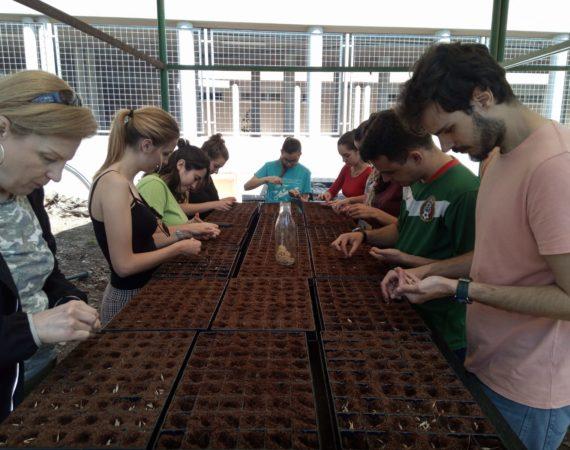 Un año de voluntariado ambiental
