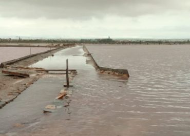 DANA causes serious damage to the Regional Park of Las Salinas y Arenales in San Pedro del Pinatar