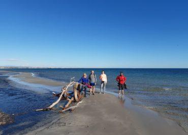 UMU companions study the effects of the Gloria storm on Llana Beach