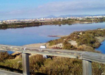 Coterillo Pond History