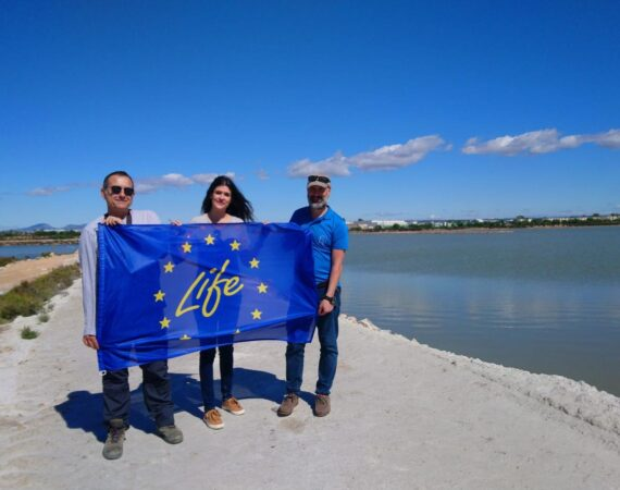 The Mar Menor General Director visits the actions of the LIFE-SALINAS Project